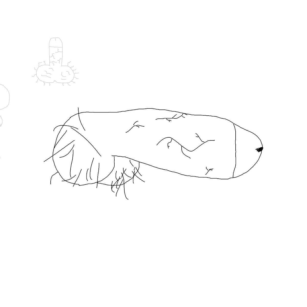 BAAAM drawing#16139 lat:24.1642799377441400lng: -110.2959518432617200