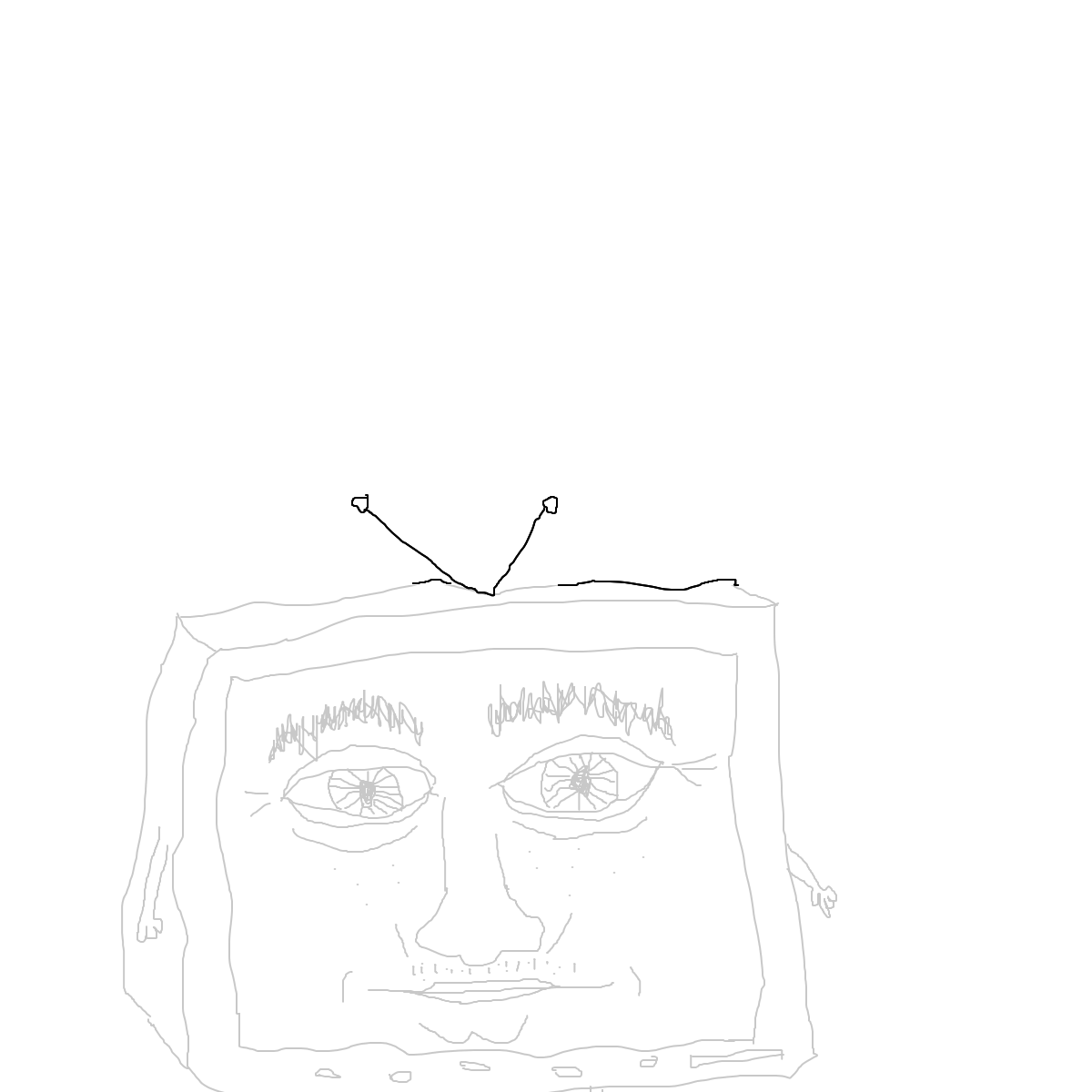 BAAAM drawing#16406 lat:35.8669967651367200lng: -78.6752166748046900