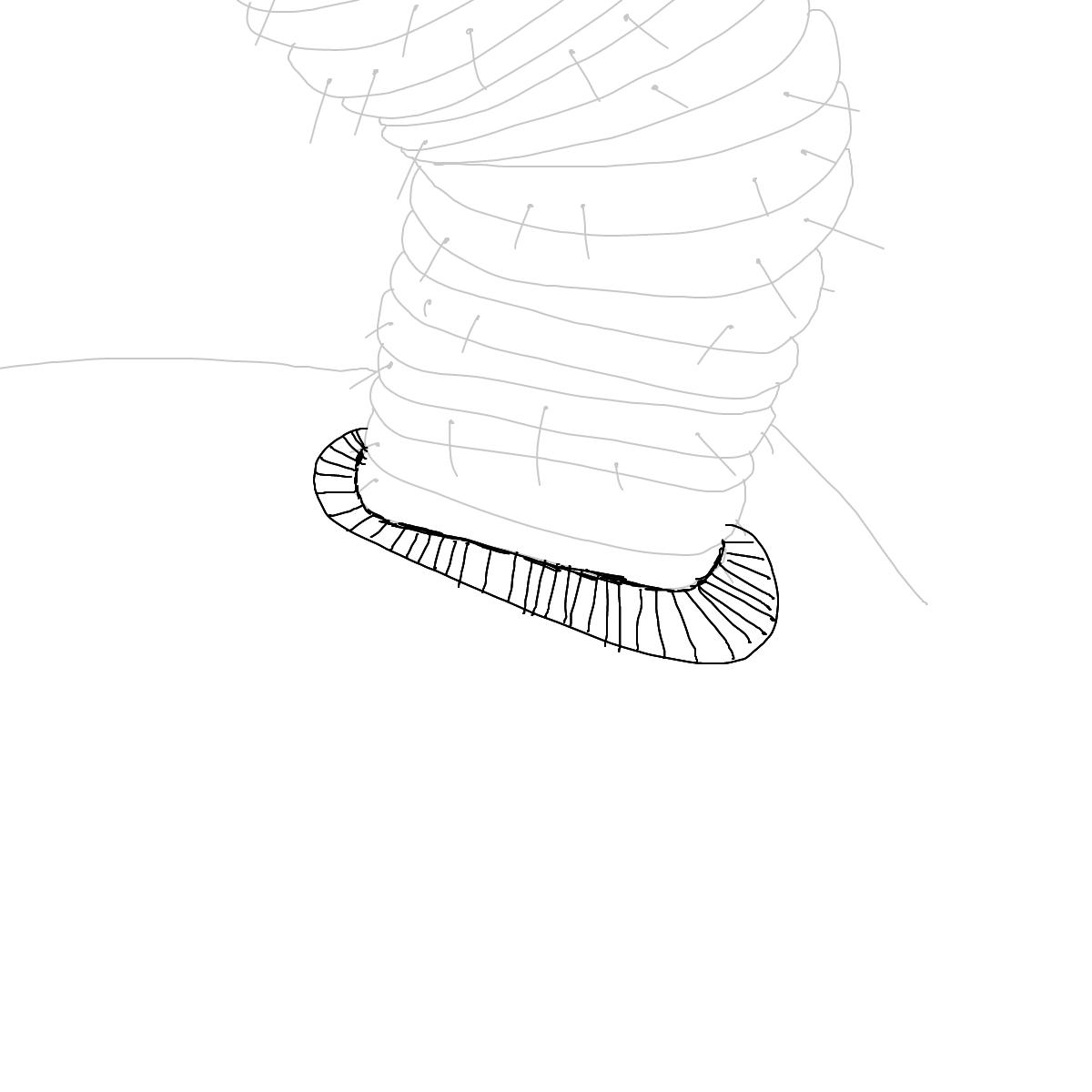 BAAAM drawing#16814 lat:52.4753112792968750lng: 13.4059419631958000