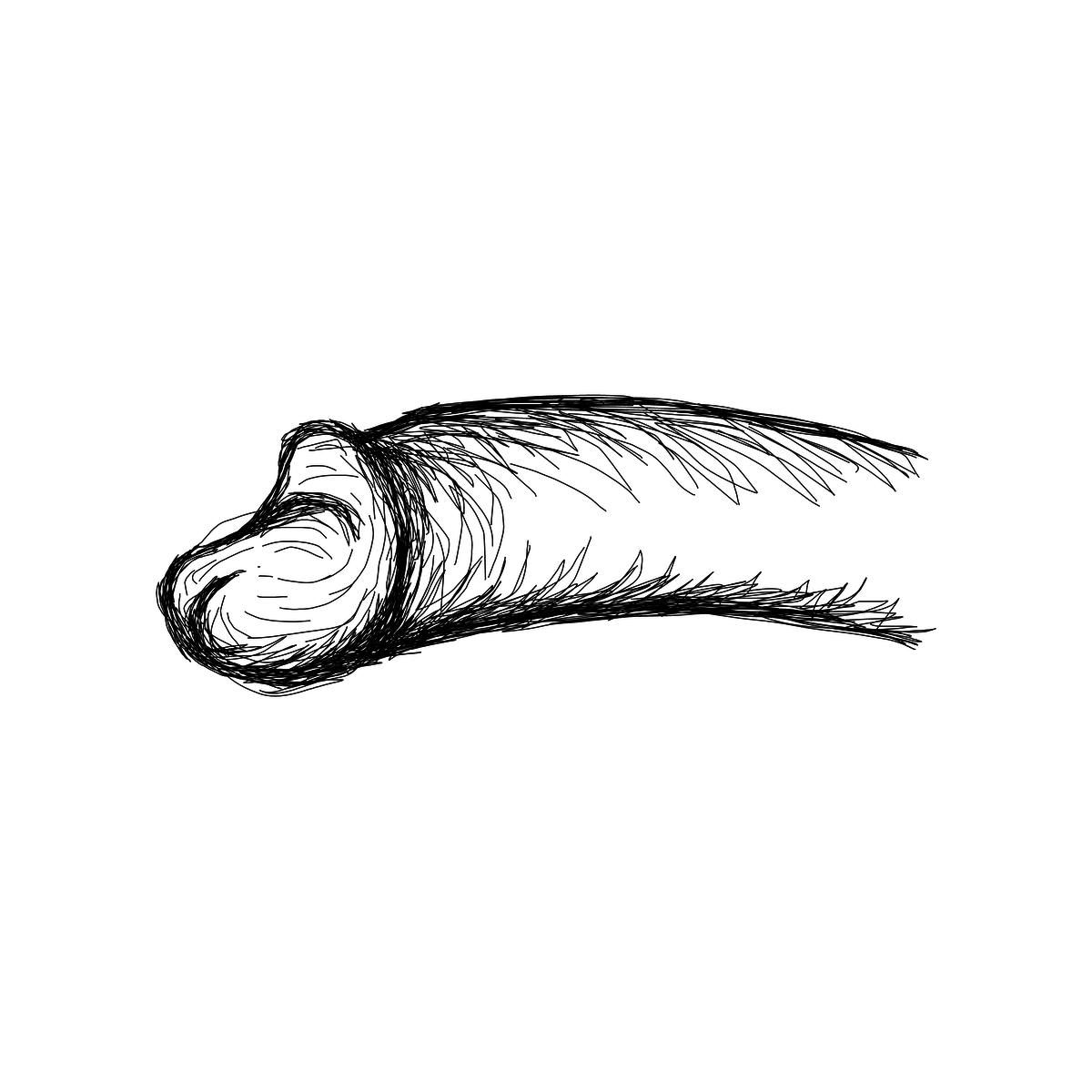 BAAAM drawing#18264 lat:-23.5473022460937500lng: -46.6349754333496100