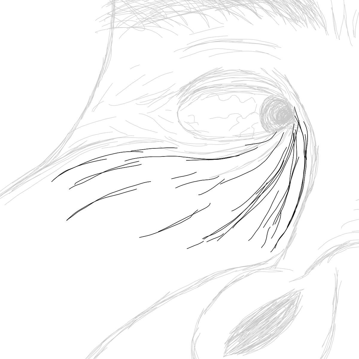 BAAAM drawing#18941 lat:-23.5477161407470700lng: -46.6355209350585940