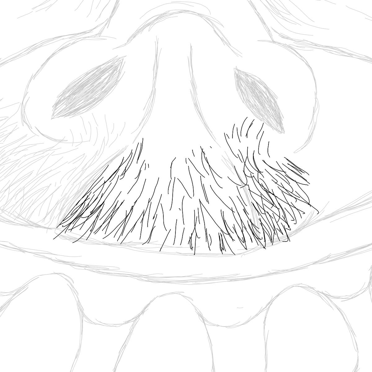 BAAAM drawing#18944 lat:-23.5477714538574220lng: -46.6354751586914060