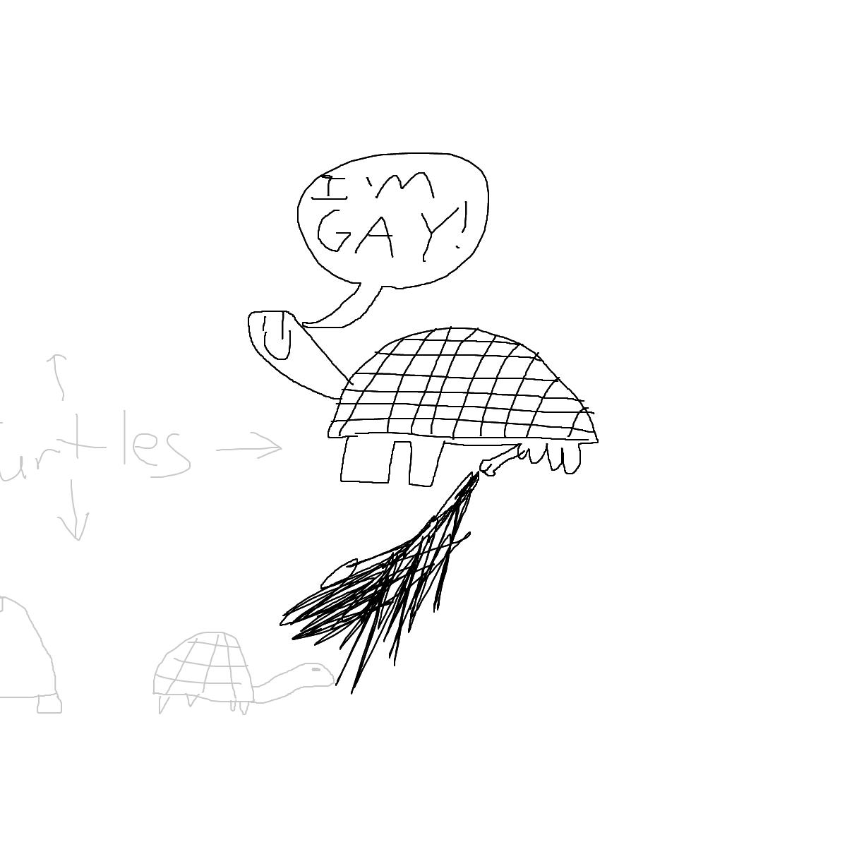 BAAAM drawing#23331 lat:-1.2386875152587890lng: -90.4036407470703100