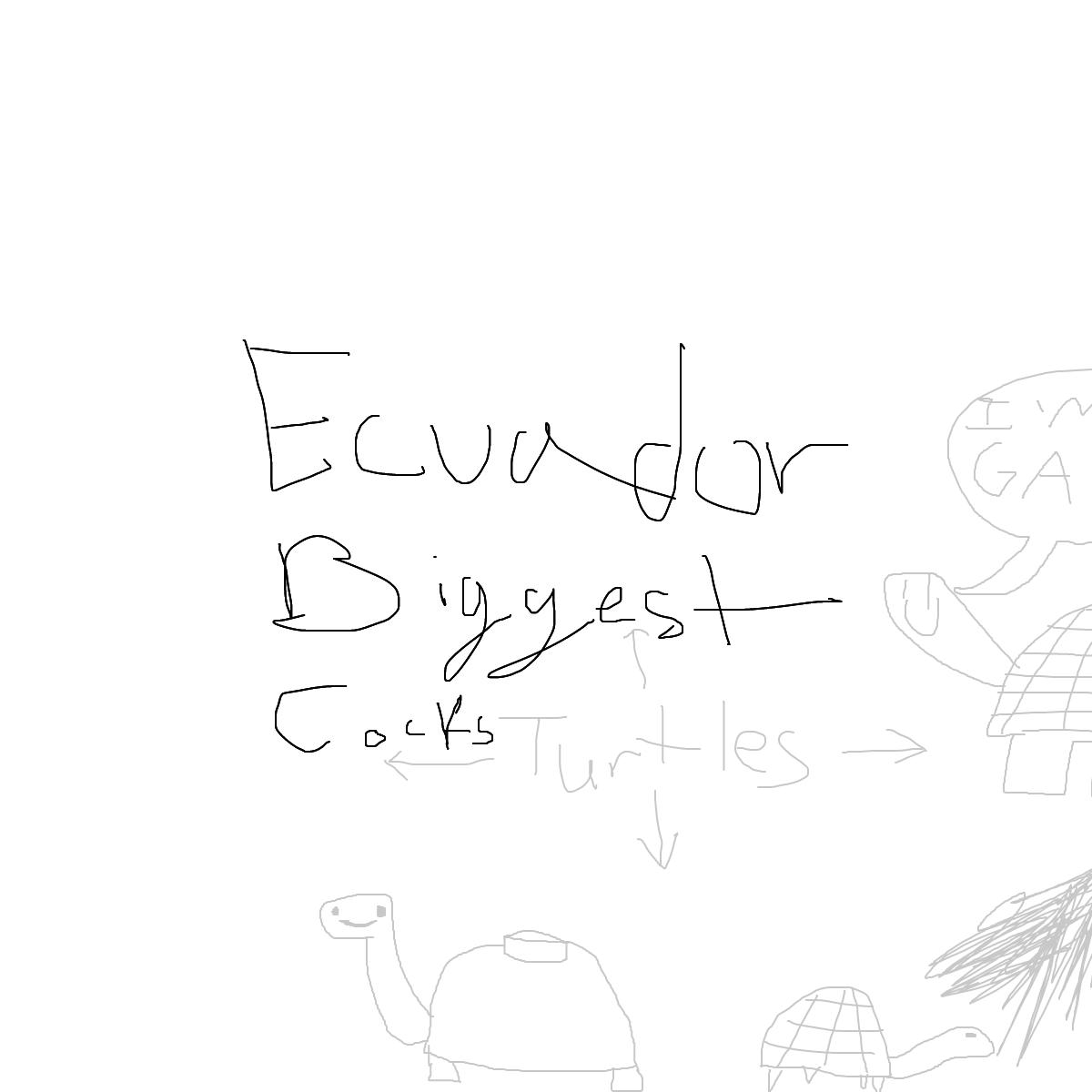 BAAAM drawing#23503 lat:-1.2386796474456787lng: -90.4036636352539000