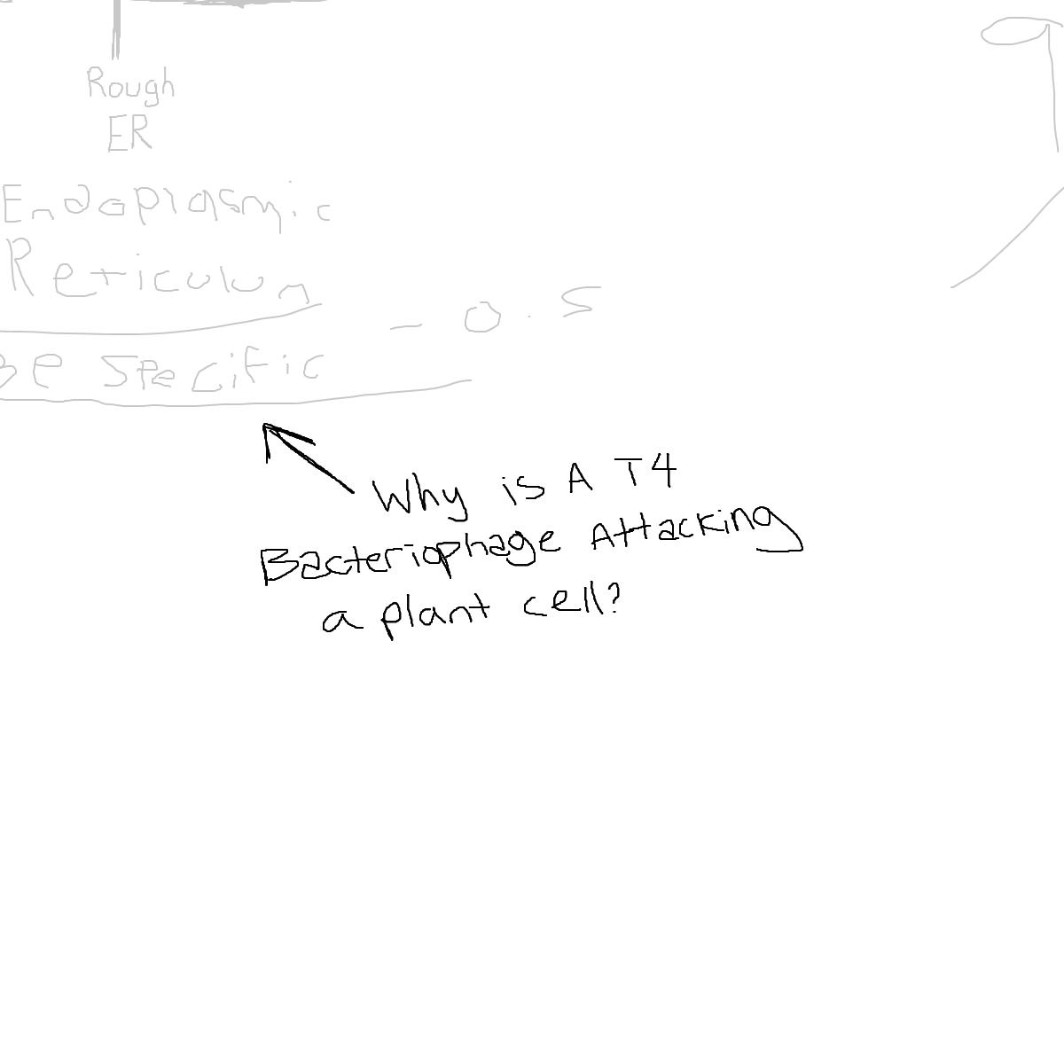 BAAAM drawing#4763 lat:39.7177352905273440lng: -75.6450271606445300