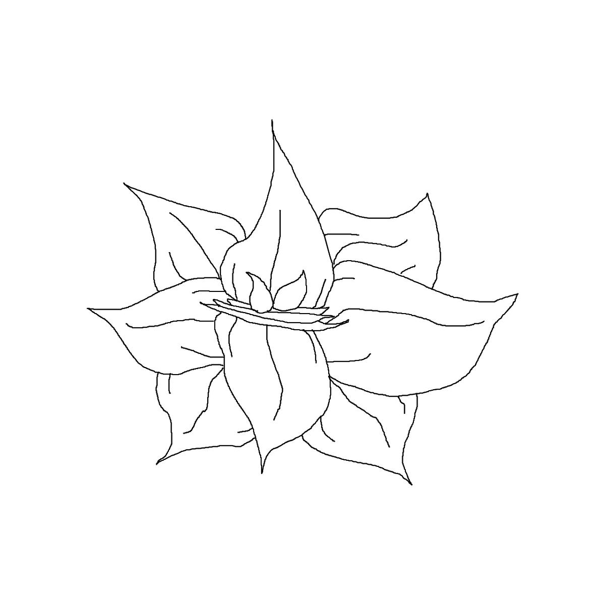 BAAAM drawing#7997 lat:47.0238800048828100lng: -55.5727348327636700