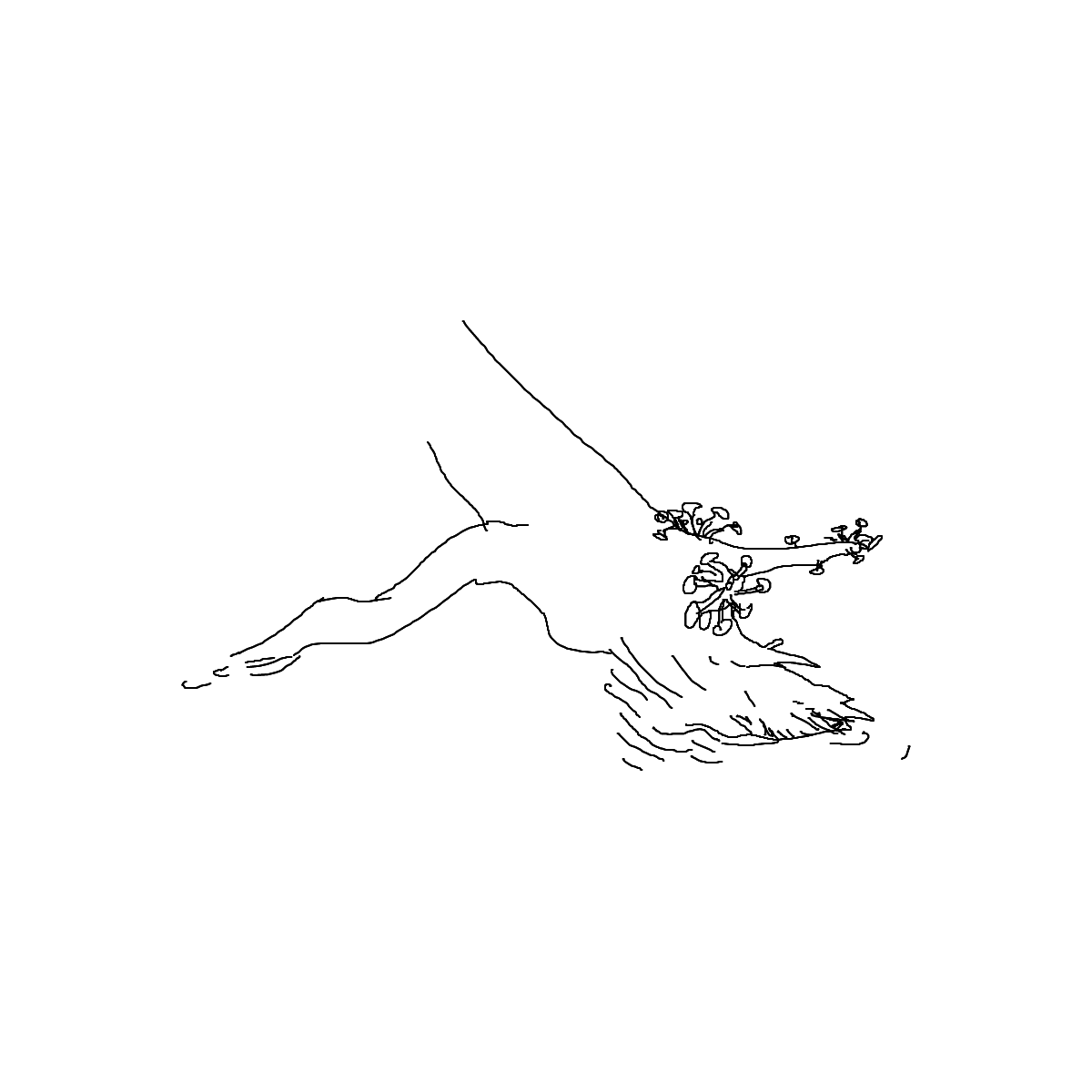 BAAAM drawing#8670 lat:78.4203186035156200lng: -4.4838137626647950